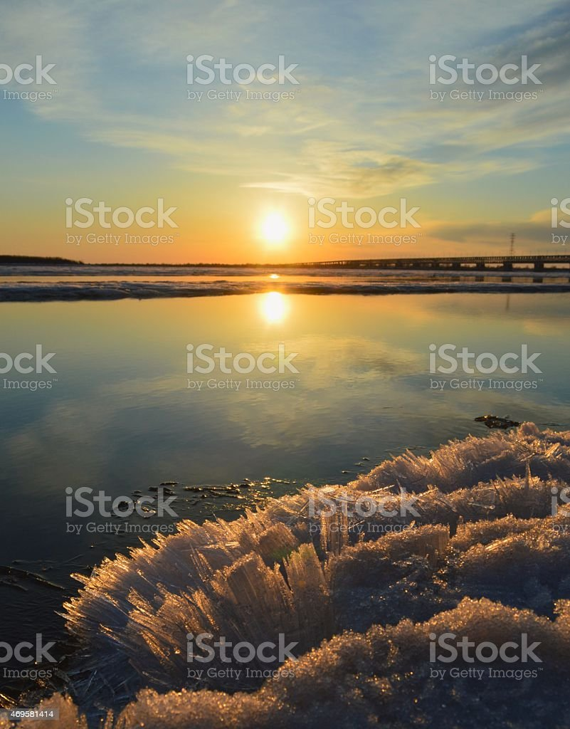 Spring on the Amur stock photo