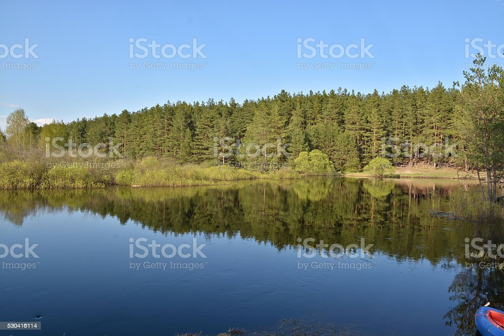 Spring on the river. stock photo