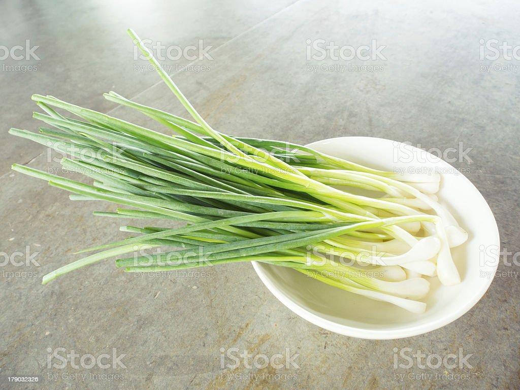 spring onion royalty-free stock photo