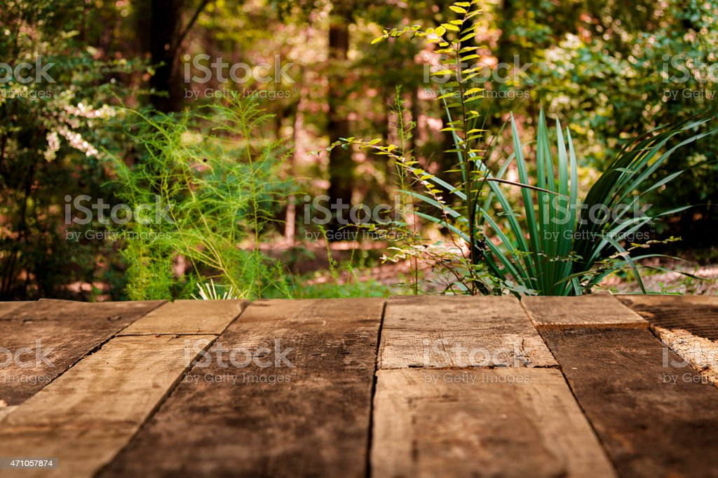 spring leaf table spring or summer forest background rustic empty wooden table stock