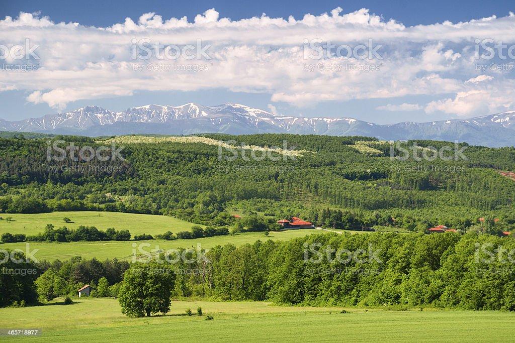 Spring paradise royalty-free stock photo