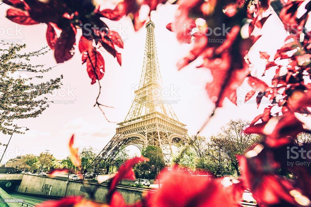 spring Paris stock photo