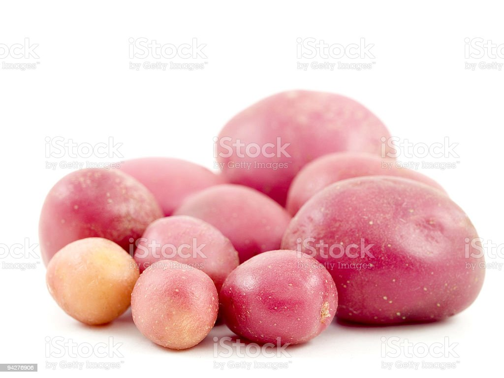 Spring Potato royalty-free stock photo