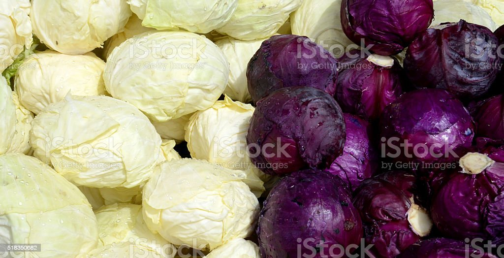 spring  red and white cabbage for sale in a market stock photo