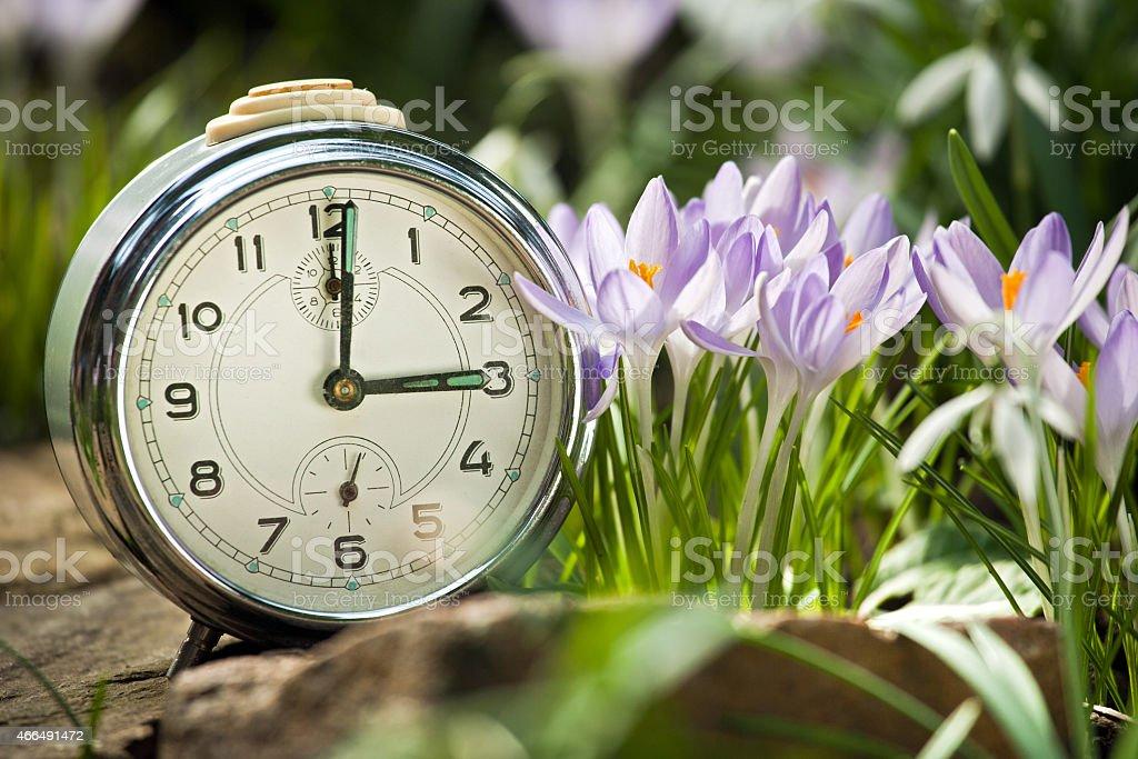 spring ringer stock photo