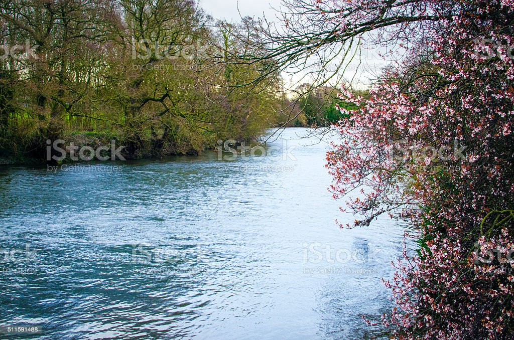 Spring river background stock photo