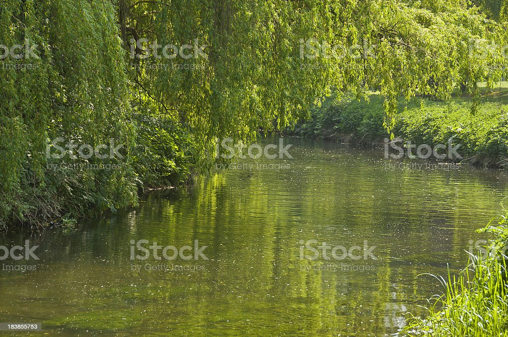 Spring river royalty-free stock photo