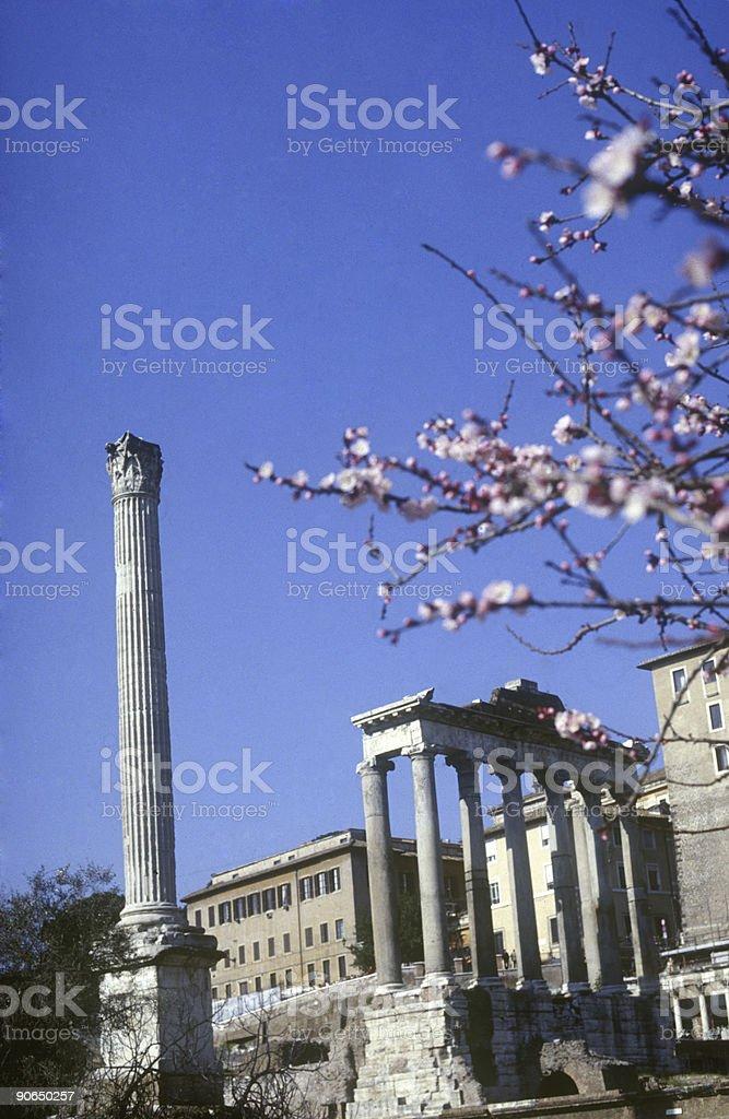 Spring Ruins royalty-free stock photo