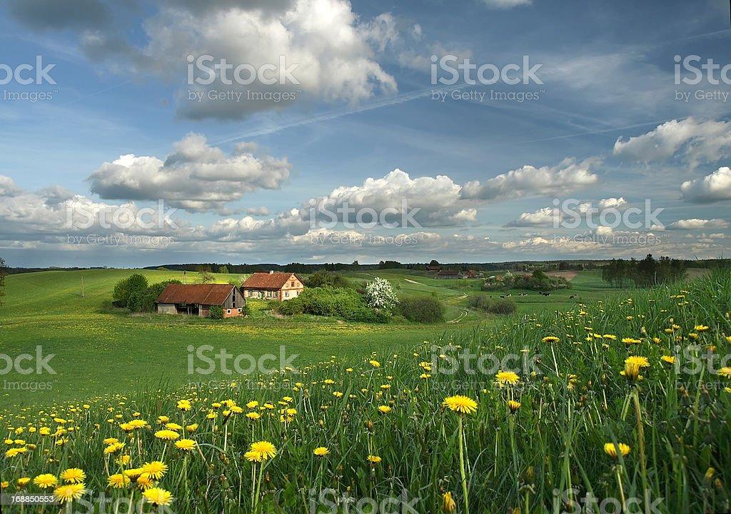 Spring rural landscape stock photo