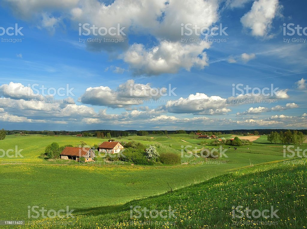 Spring rural landscape royalty-free stock photo