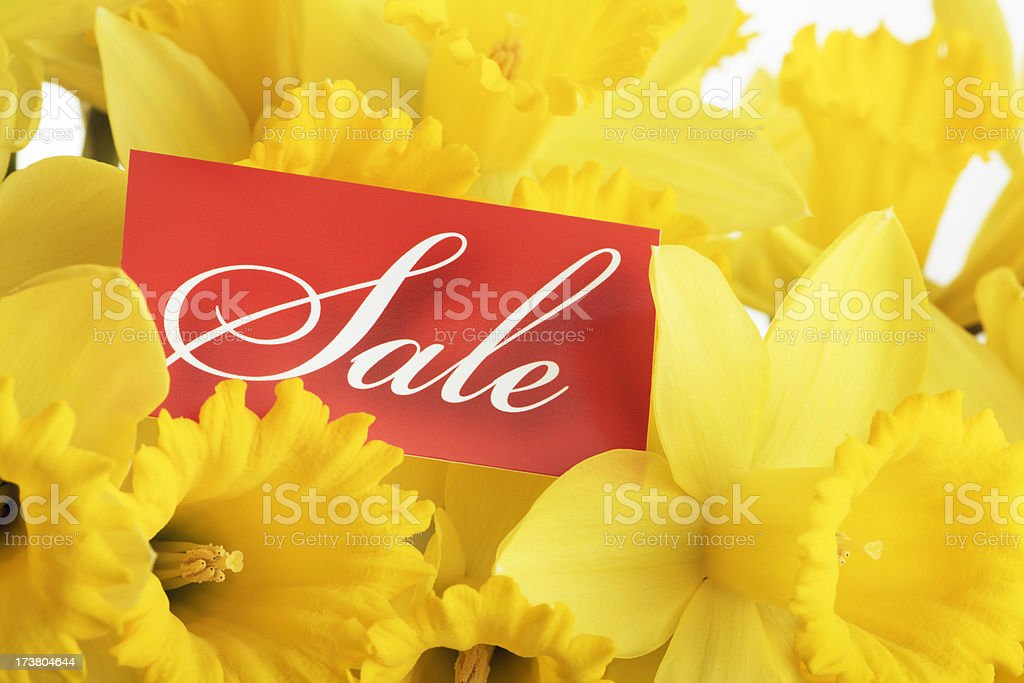 Spring Sale Sign royalty-free stock photo