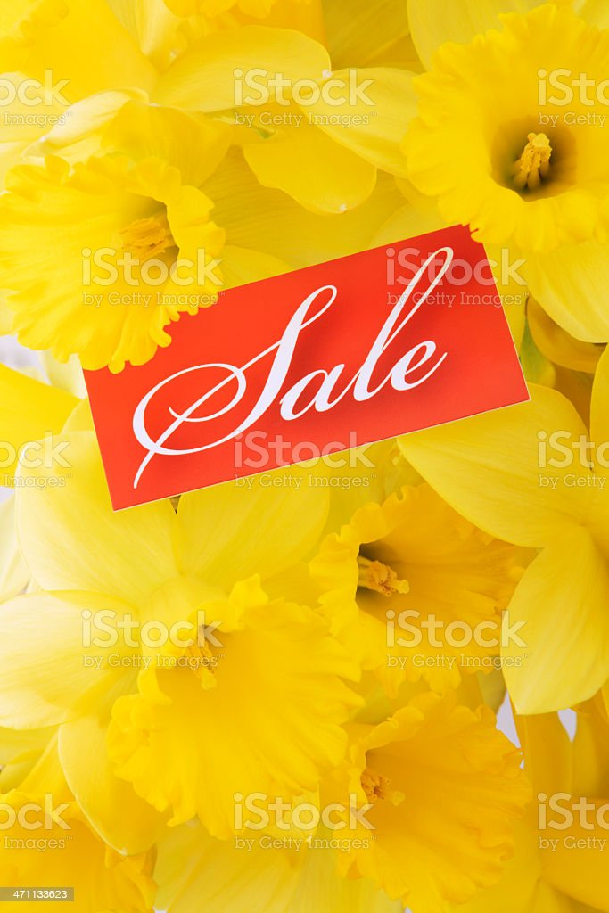 Spring Sale Sign Vt royalty-free stock photo