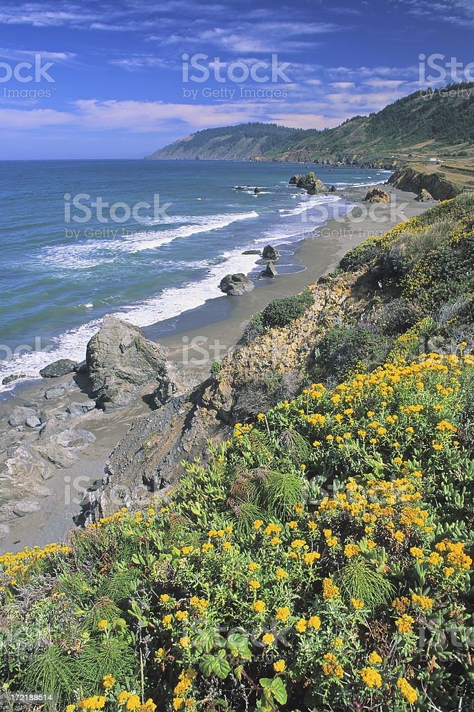 Spring Seascape royalty-free stock photo