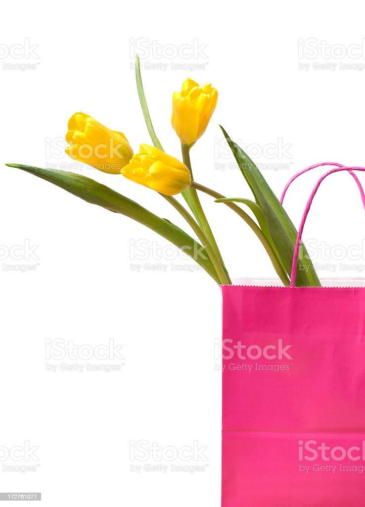 Spring Shopping royalty-free stock photo