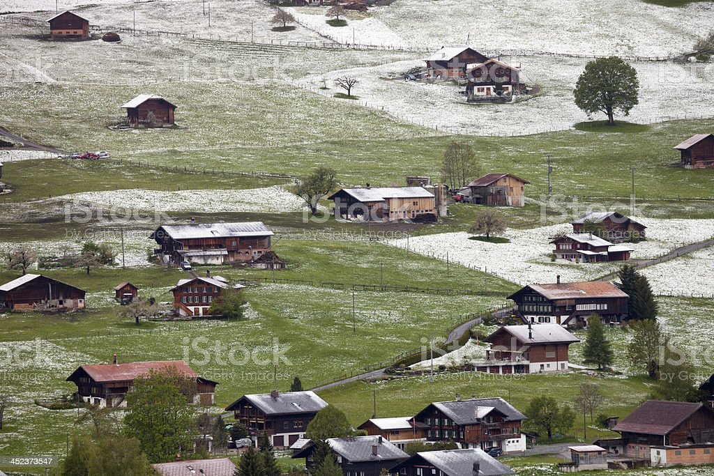 Spring Snowfall in Swiss Alps stock photo