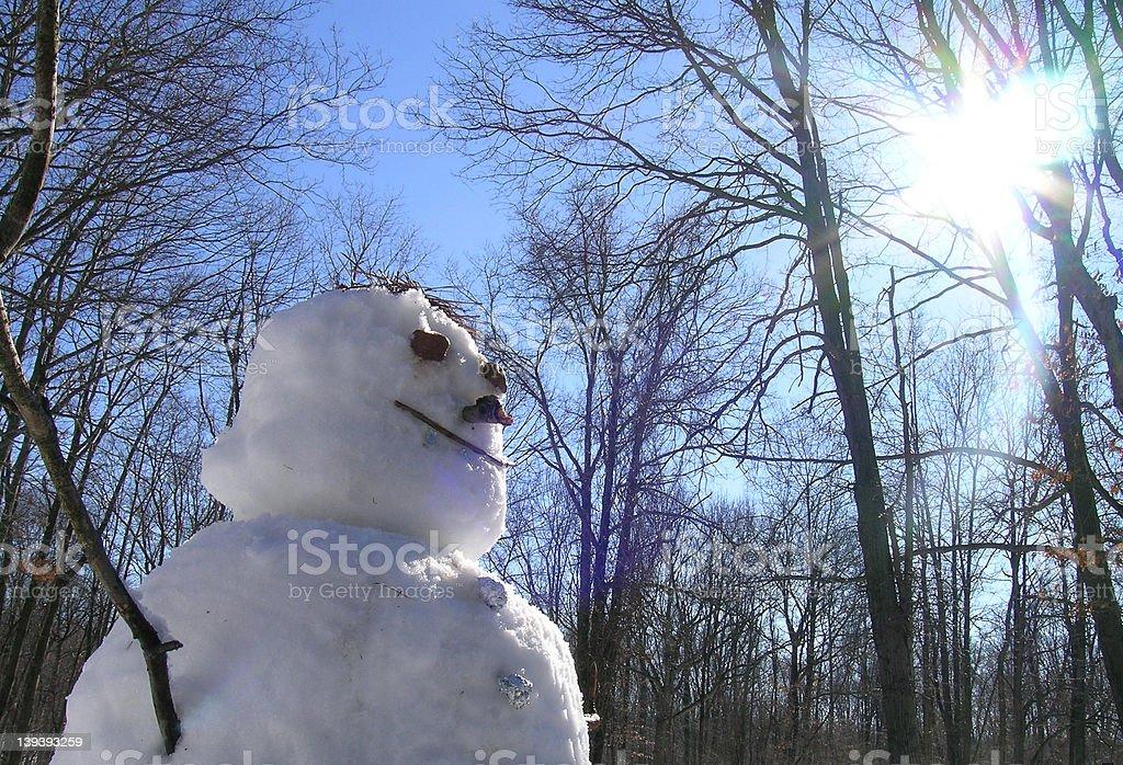 Spring Snowman royalty-free stock photo