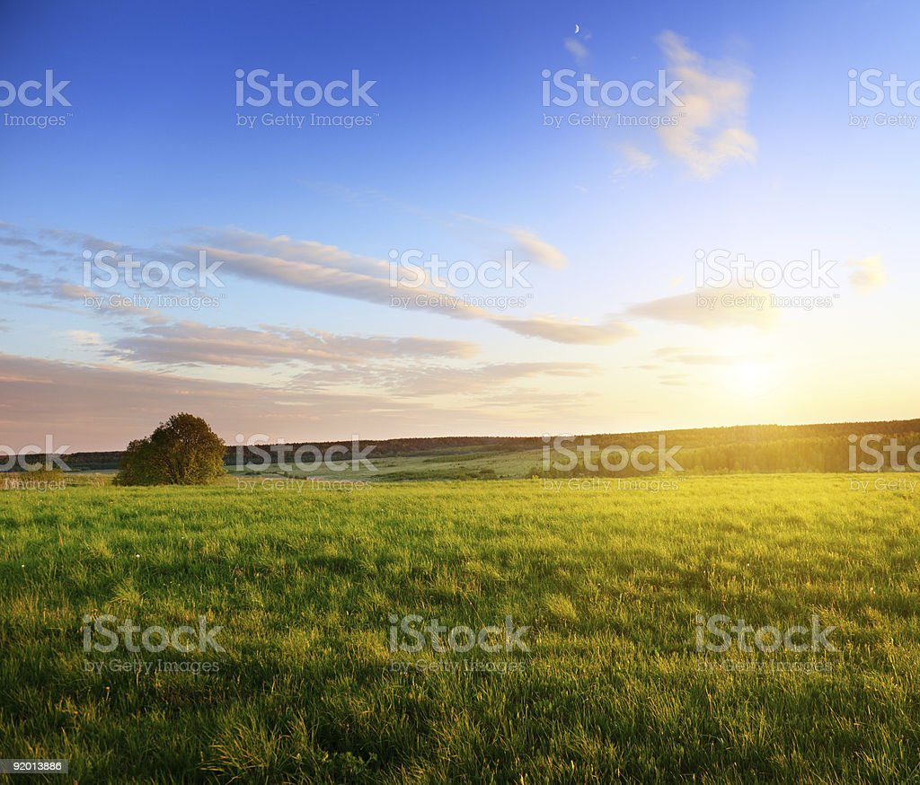 spring sunset royalty-free stock photo