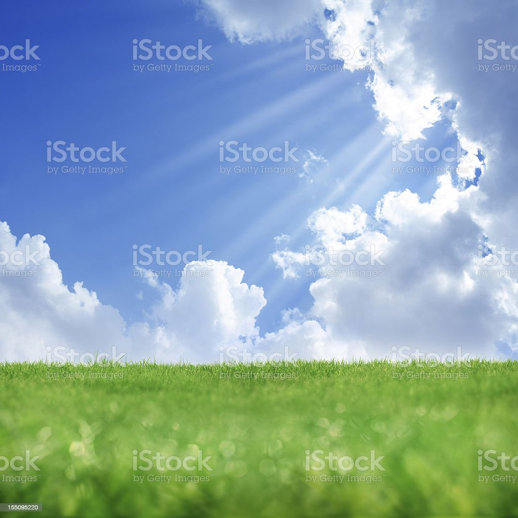 spring sunshine and green landscape stock photo