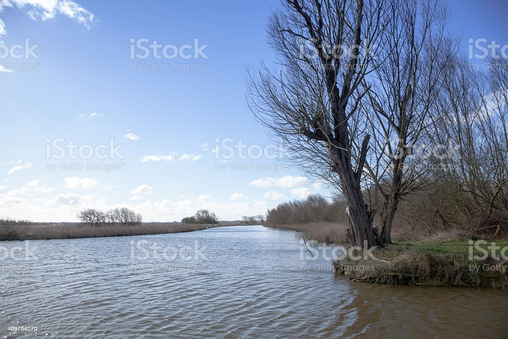 spring sunshine on quiet Norfolk Broads Eastern england stock photo