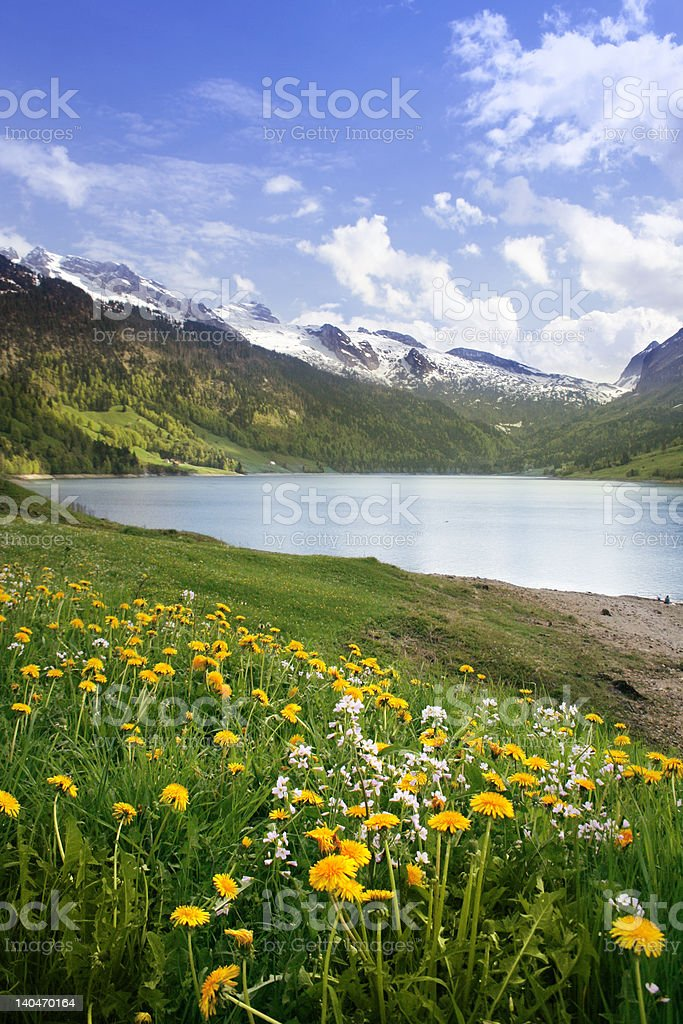 Spring Swiss lake royalty-free stock photo
