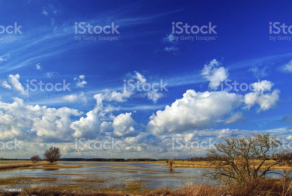 Spring thaw royalty-free stock photo