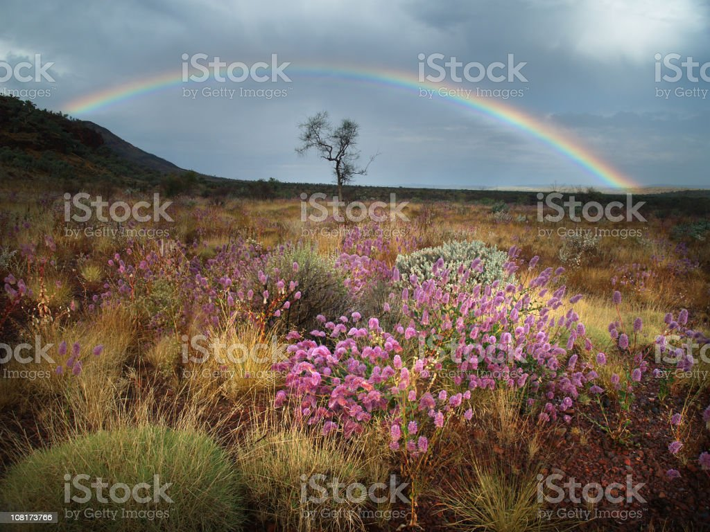 Spring Thunderstorm in the Desert stock photo