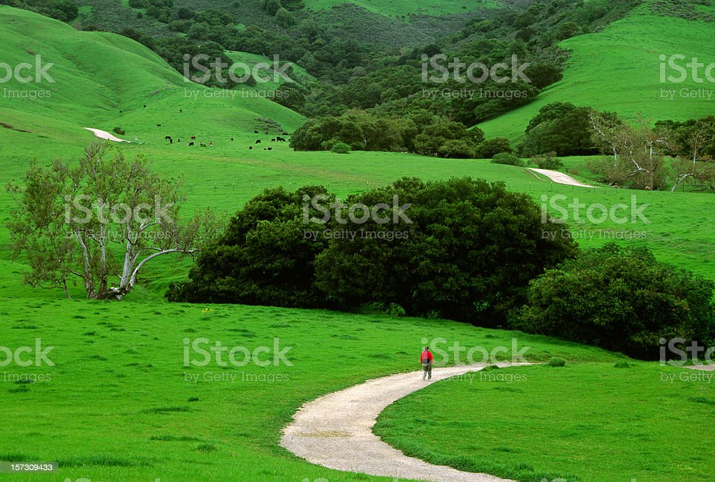 Spring time hike through the lush green hills stock photo