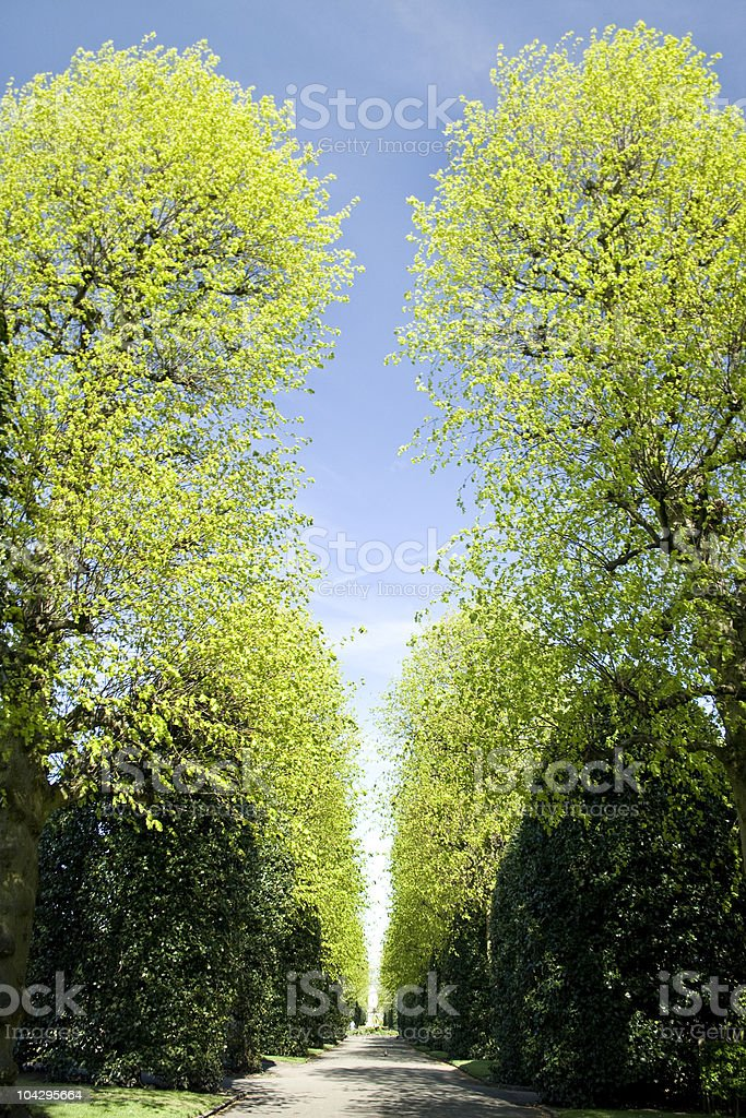 Spring time in Chester park royalty-free stock photo