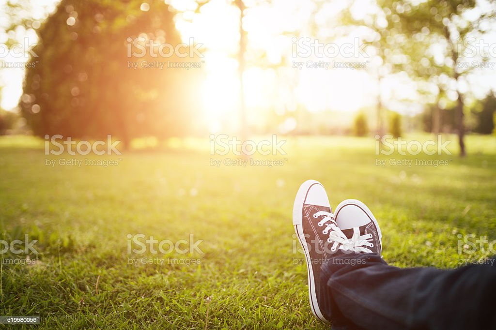 Spring time in the park with sunlight stock photo