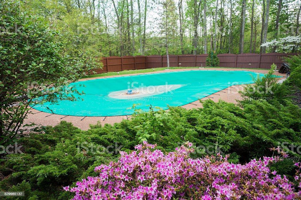 Spring time with flowers around inground pool stock photo