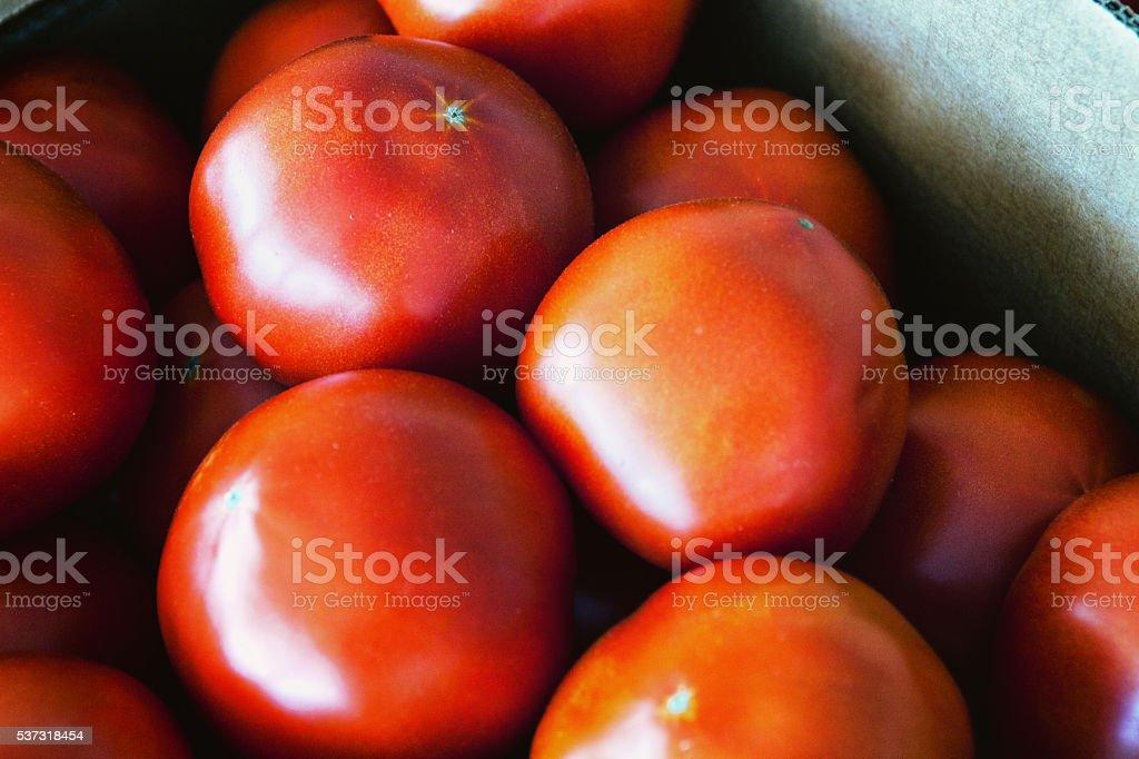 Spring Tomatoes stock photo