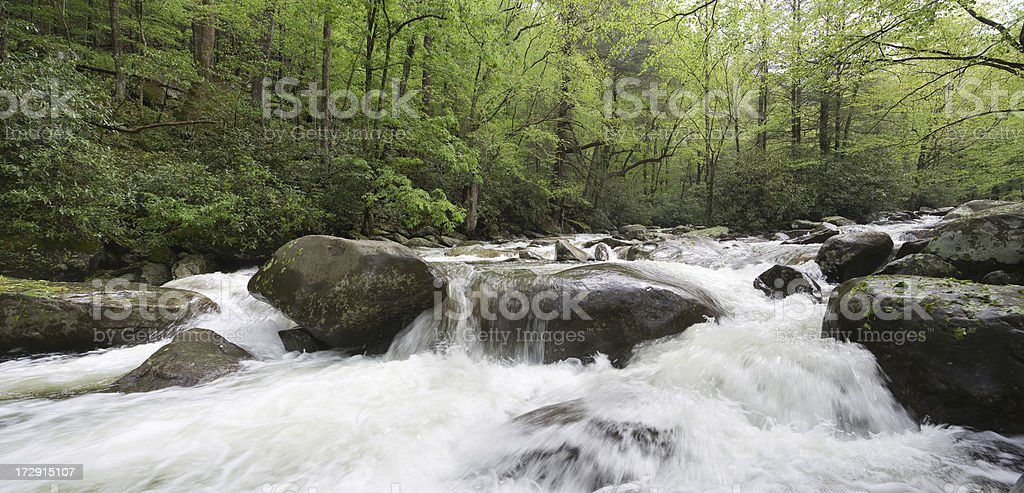 Spring torrent. royalty-free stock photo