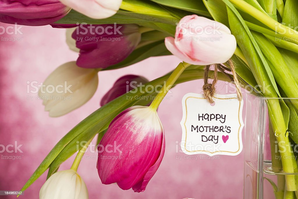 Spring Tulips for Mother's Day royalty-free stock photo