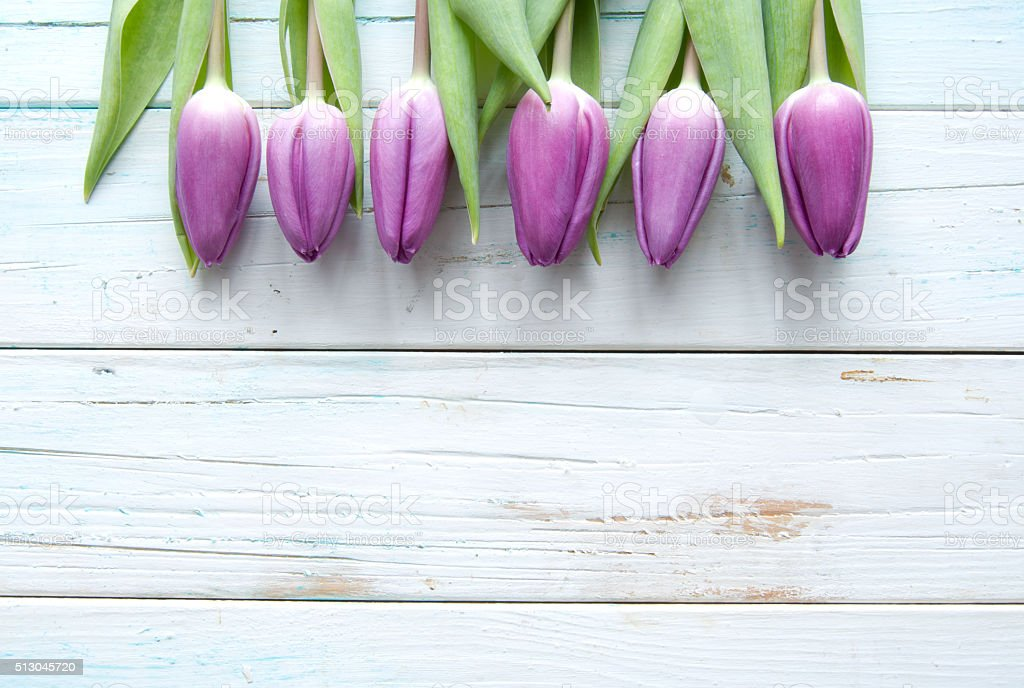 Spring tulips on wooden background stock photo