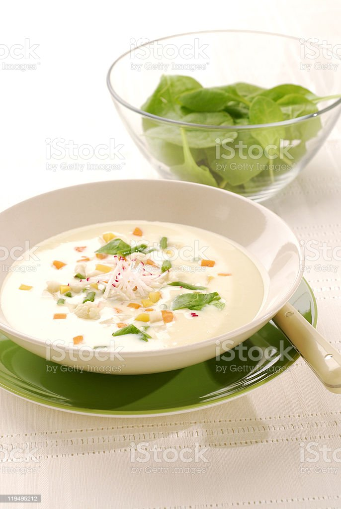 spring vegetable soup royalty-free stock photo
