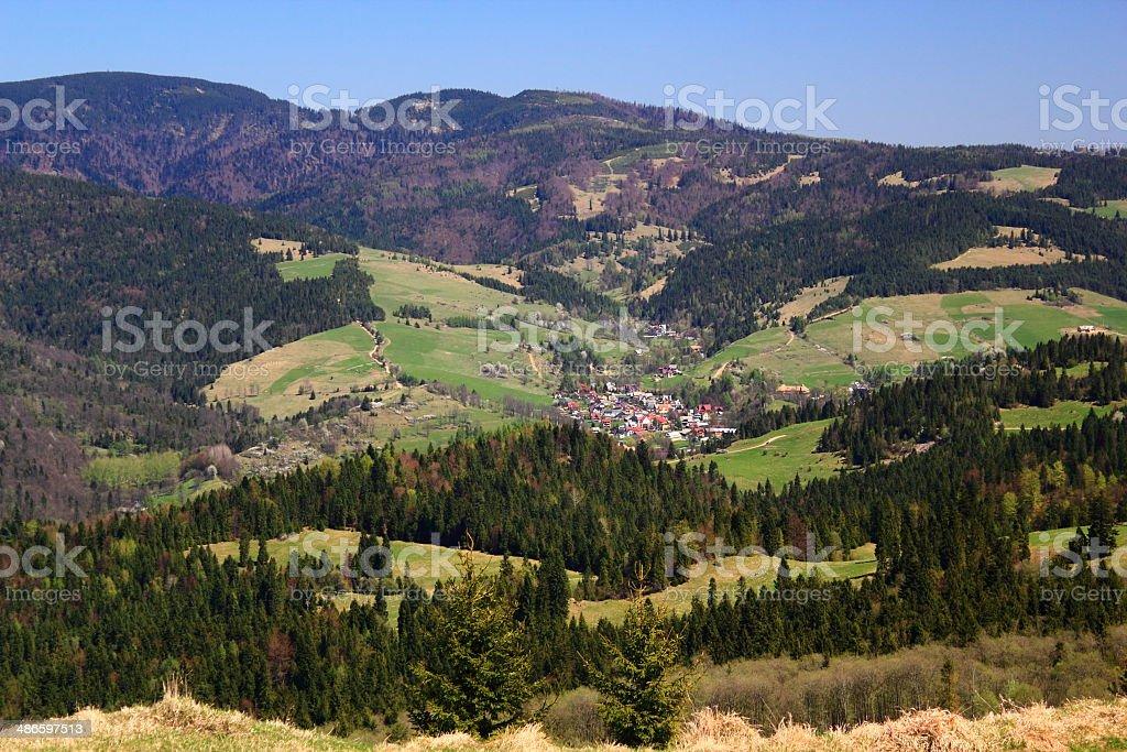 Spring. Village in Mountains. Pieniny, Poland. stock photo
