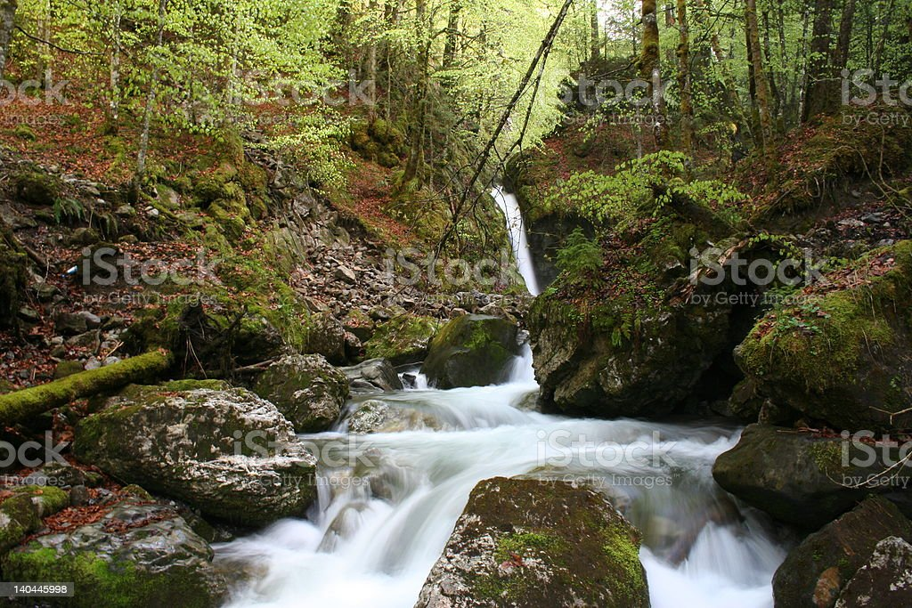 Spring water fall royalty-free stock photo