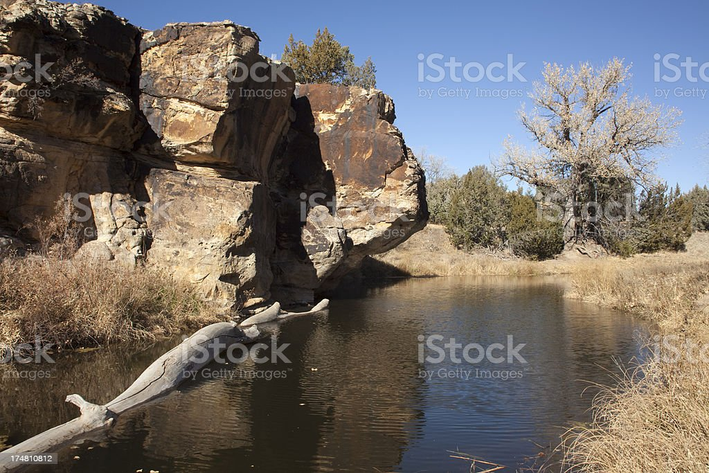 Spring water in Carizzo Canyon Colorado royalty-free stock photo