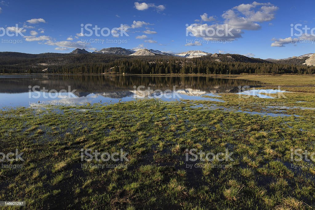 Spring waters at Tuolumne Meadows in Yosemite stock photo