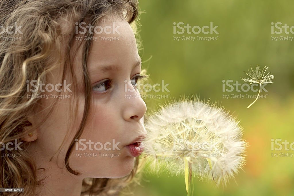 Spring wish royalty-free stock photo