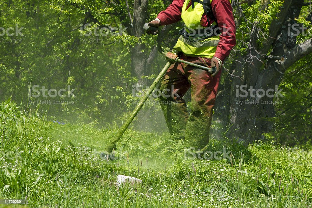 spring works, trimming grass royalty-free stock photo