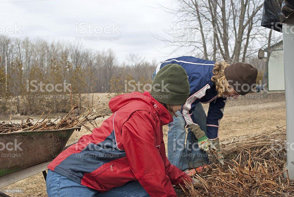 Spring Yardwork royalty-free stock photo