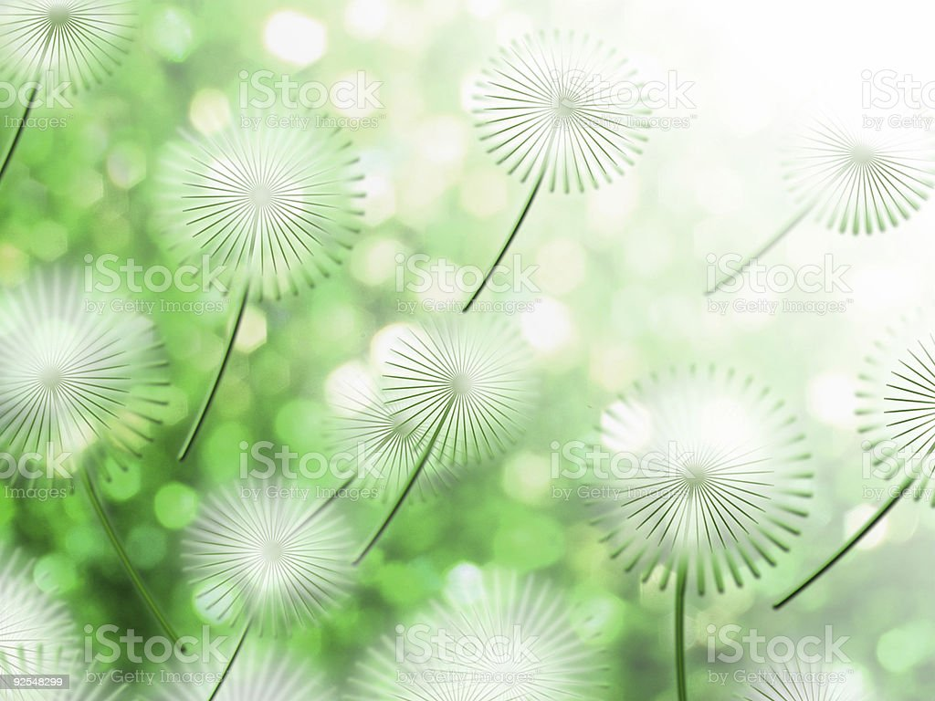 Spring-green2 royalty-free stock photo