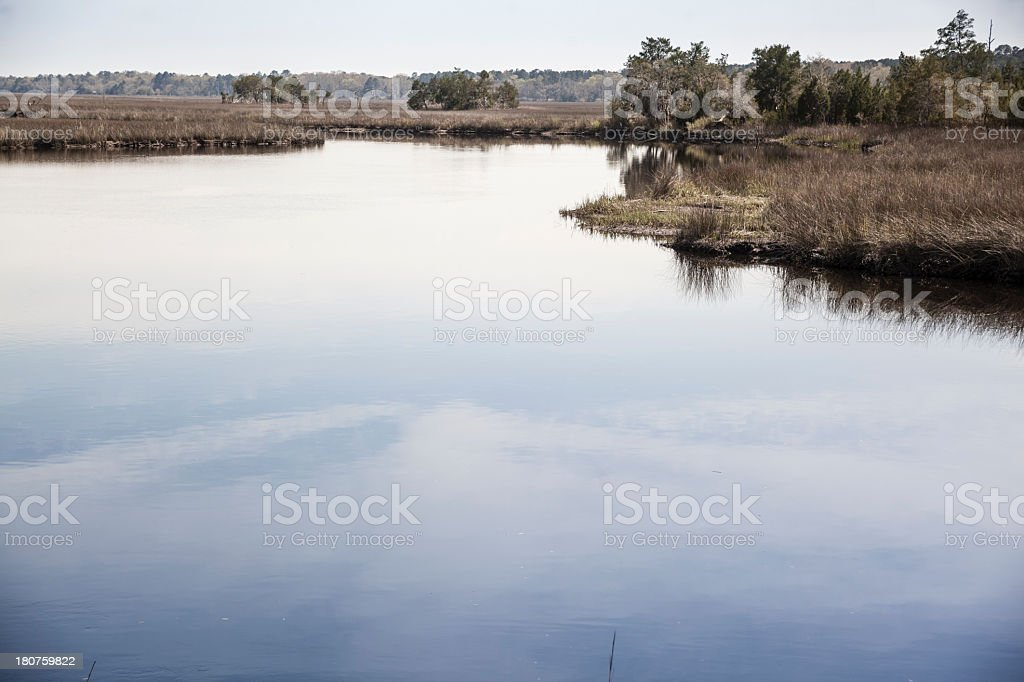 Spring's flood on Coosawatchie River in South Carolina, USA royalty-free stock photo