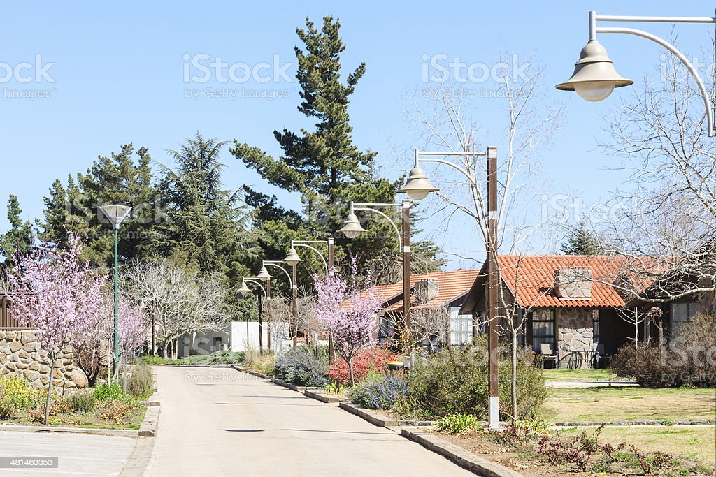 Springtime alley in the country area stock photo