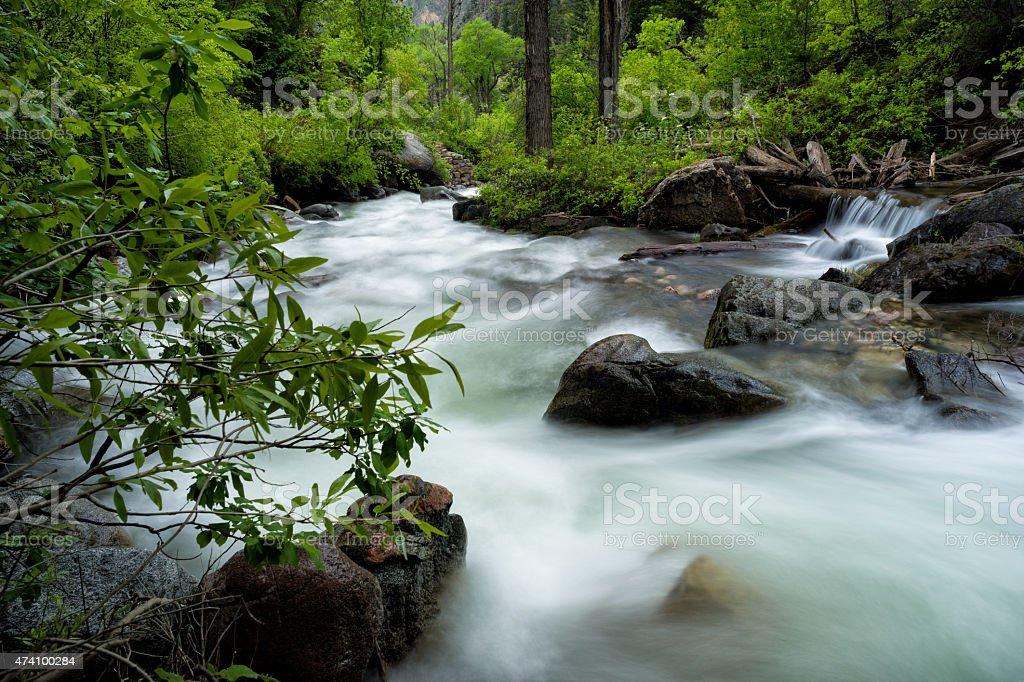 Springtime along Mountain Creek stock photo
