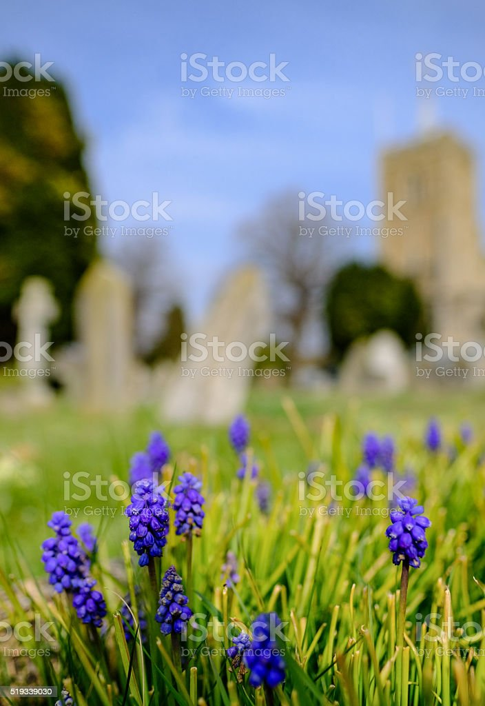 Springtime at an typical cemetery stock photo