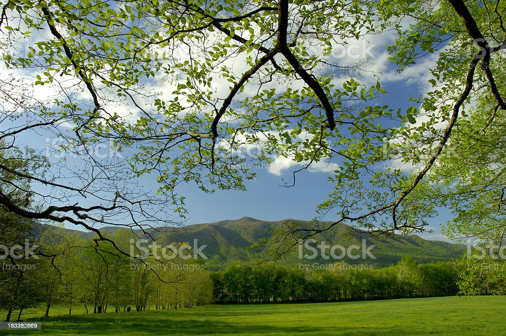 Springtime in Cades Cove of Great Smoky Mountains National Park stock photo
