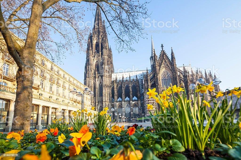 Springtime in Cologne stock photo