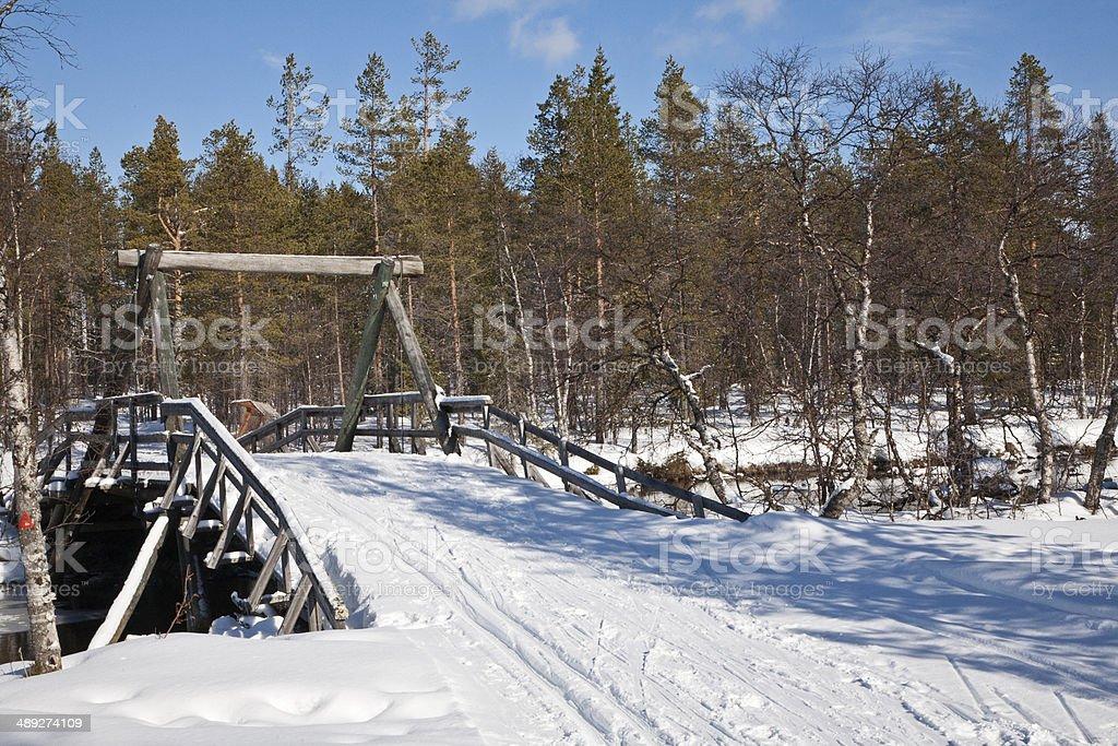Springtime in Lapland royalty-free stock photo